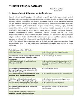 proje önerisi özet raporu - Bilim, Teknoloji ve İnovasyon Politikaları