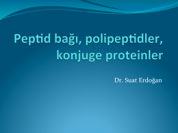 Tıp_Ders5_Peptid bagı, peptidler, polipeptidler
