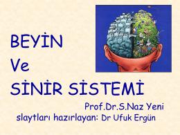 Prof. Dr. Seher Naz YENİ - İ.Ü. Cerrahpaşa Tıp Fakültesi