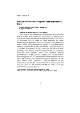 ubikitin-proteozom yolağının karsinojenezdeki rolü