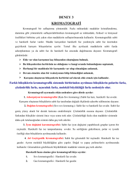 Organik-Kromatog. Deney 3