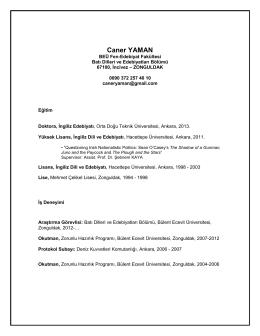 CV Template : Academic Careers - Bülent Ecevit Üniversitesi Fizik
