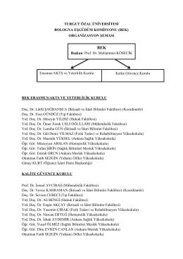 Organizasyon Şeması ve Üyeler