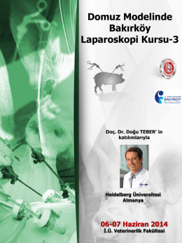 domuz modelinde bakırköy laparoskopi kursu