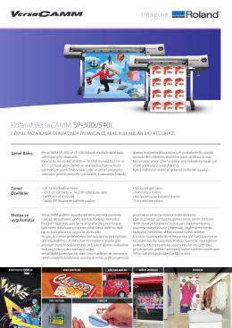 Roland VersaCAMM SP-300i/540i