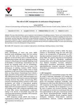 The role of ABC transporters in anticancer drug transport