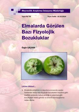 Elmalarda Görülen Bazı Fizyolojik Bozukluklar