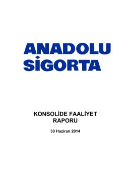 Konsolide Faaliyet Raporu 2014/6