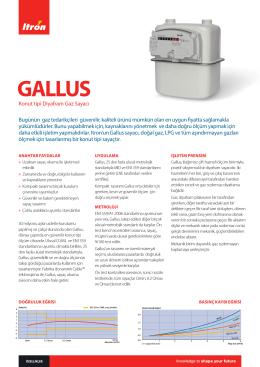 gallus-04-tr-01-14