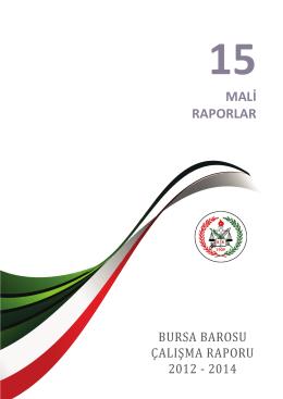 15.bölüm - mali raporlar