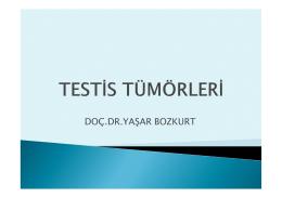 DOÇ.DR.YAŞAR BOZKURT