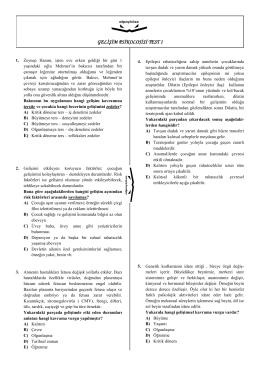 GELİŞİM PSİKOLOJİSİ TEST 1