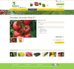 Domates tohumları Alı̇ye F1