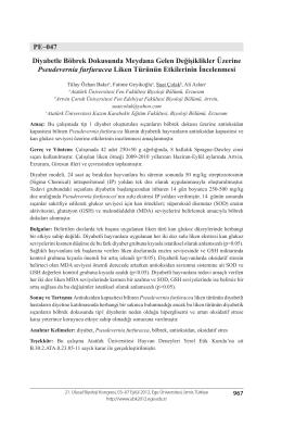 PE–047 Diyabetle Böbrek Dokusunda Meydana Gelen Değişiklikler