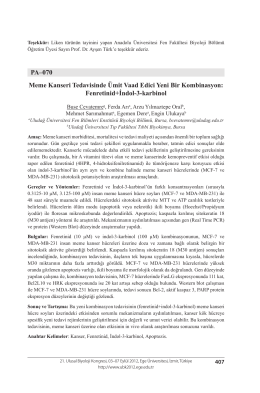 Fenretinid+İndol-3-karbinol