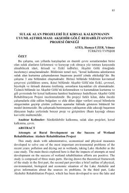 akşehir gölü rehabilitasyon projesi örneği