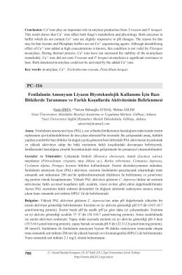 PC–116 Fenilalanin Amonyum Liyazın Biyoteknolojik Kullanımı İçin