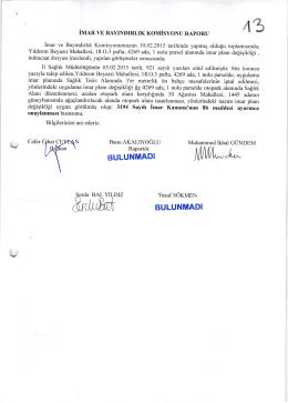 2014-100 komisyon raporu