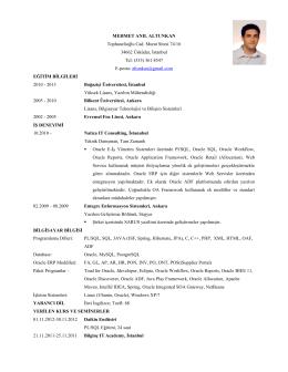 Örnek CV