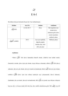 ابل E-b-l - alim allah sözlük