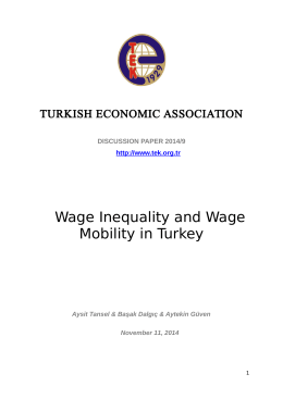 Wage Inequality and Wage Mobility in Turkey
