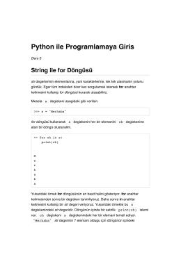 Python ile Programlamaya Giris