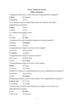 Bilgisayara Giriş Çalışma Soruları