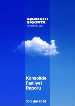 Konsolide Faaliyet Raporu 2014/9