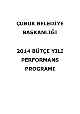 2014 performans raporu