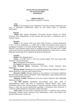 Dumlupınar Üniversitesi Ön Mali Kontrol Yönergesi