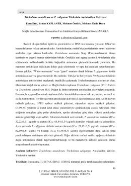Tricholoma anatolicum ve T. caligatum Türlerinin Antioksidan Aktivitesi