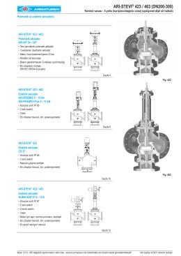 ARI-STEVI® 423 / 463 (DN200-300)