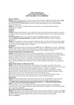 Toros Üniversitesi Güzel Sanatlar Fakültesi Pratik Çalışma Ve Staj