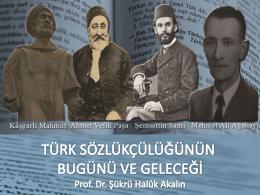 türk sözlükçülüğünün bugünü ve geleceği