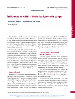 PDF - İnfluenza A H1N1 – Meksika kaynaklı salgın
