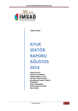 aylık sektör raporu ağustos 2014