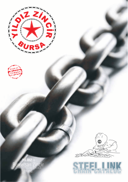 Download Steel Link Chain Catalogue