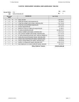 1.6 bütçe giderlerinin kurumsal sınıflandırılması tablosu özel kalem
