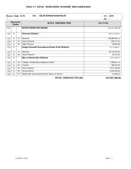 TABLO 1.9 BÜTÇE GİDERLERİNİN EKONOMİK