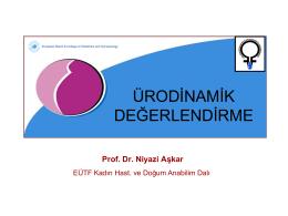 Prof. Dr. Niyazi Aşkar