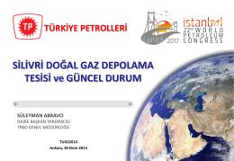 Süleyman Abravcı (TPAO) - Türkiye Uluslararası Yeraltı Doğal Gaz