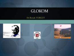 GLOKOM - ResearchGate