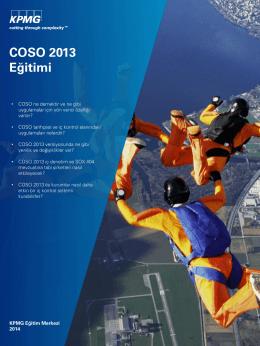 COSO 2013