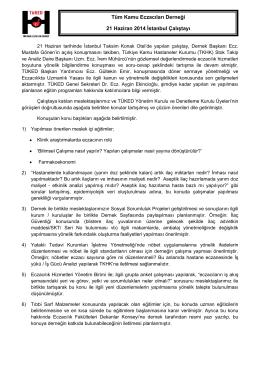 TÜKED – İstanbul Çalıştay Raporu