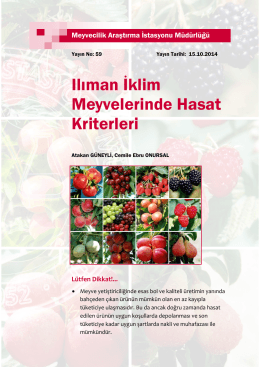 Ilıman İklim Meyvelerinde Hasat Kriterleri