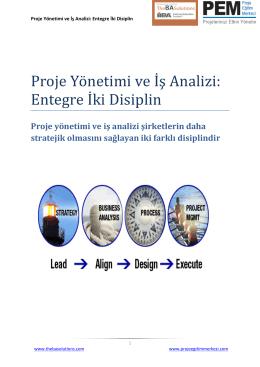 Proje Yönetimi ve İş Analizi: Entegre İki Disiplin