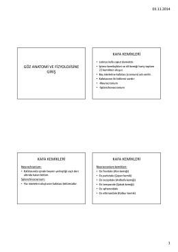 Göz anatomisi fizyolojiye giriş PDF