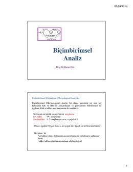 Bicimbirimsel Analiz-5