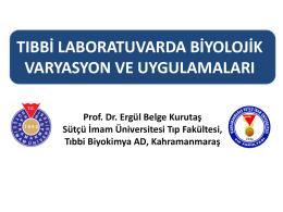 Prof. Dr. Ergül Belge Kurutaş