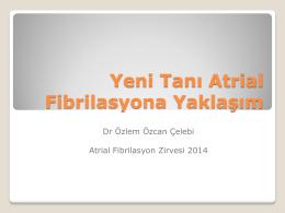Özlem Özcan Çelebi - 4. atriyal fibrilasyon zirvesi 2015